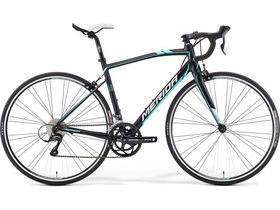 MERIDA Ride Juliet Alloy 100